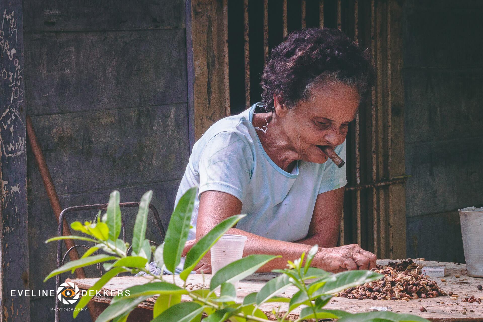 selecting-tobacco-seed-cuba