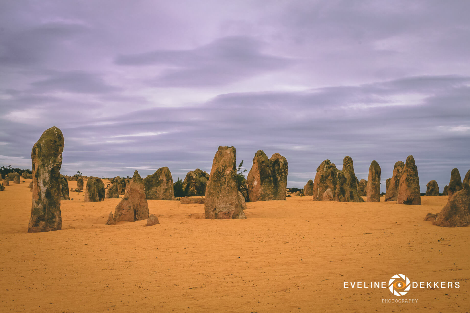 pinnacles-desert-australia