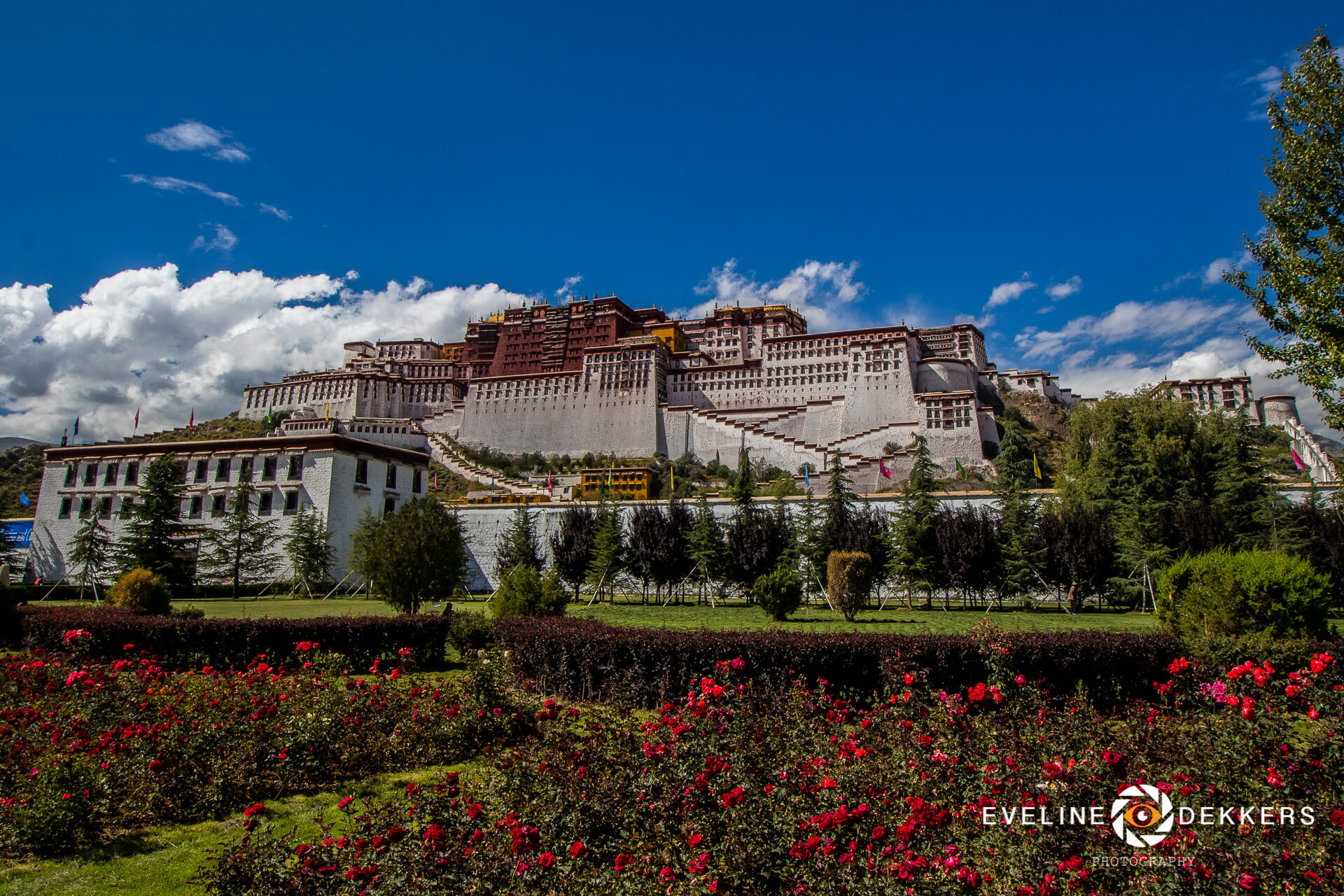 Potala Palace in Lhasa - Tibet