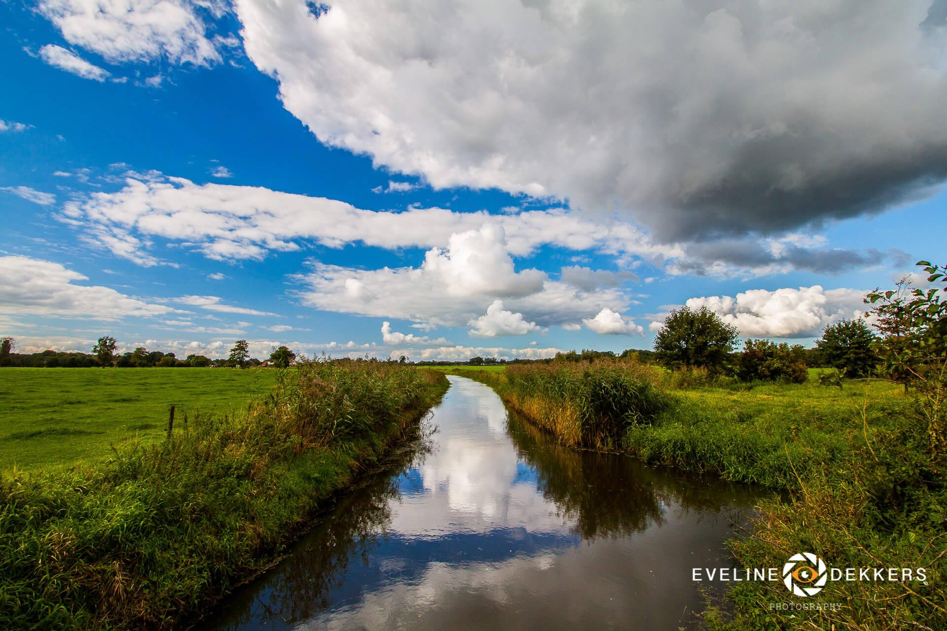 landscape-summer-dutch